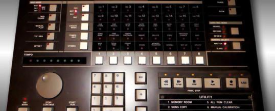 Studio-Neuzugang Midiizer